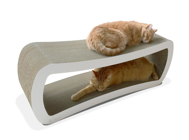 guide to the top 5 cat beds